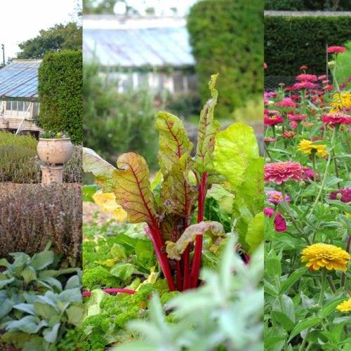 congham hall herb garden norfolk