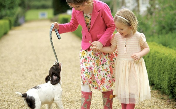dogs at congham hall